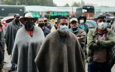 Ministerio de Agricultura destinará 5.000 millones de pesos a productores de papa afectados por baja de precios y heladas