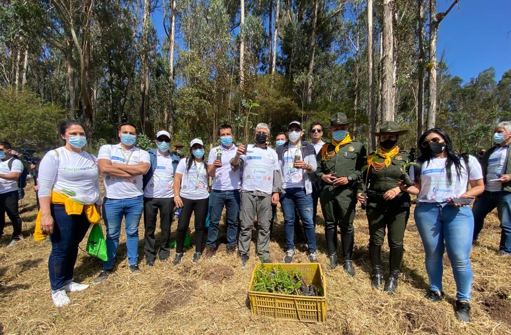 310.000 árboles fueron sembrados en el departamento de Nariño, en la Gran Sembratón Nacional